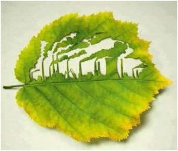 pollution-ecology